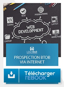 Télécharger e-book fondamentaux prospection BtoB via internet