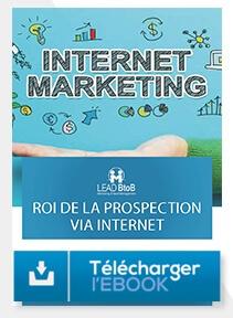 Télécharger e-book la prospection sur internet combien ça rapporte